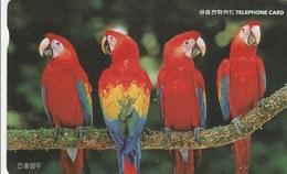 Korea South -  Bird - Parrots (Ara Macao) - Korea, South