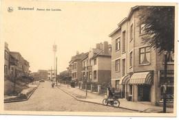 Watermael NA6: Avenue Des Lucioles - Watermaal-Bosvoorde - Watermael-Boitsfort