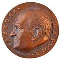 Csúcs Ferenc (1905-1999) DN 'Rákosi Mátyás' Br Plakett (92,5mm) T:2 - Coins & Banknotes