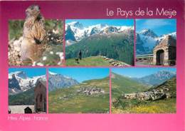 05 - Hautes Alpes - Massif De La Meije - Multivues - Marmottes - Voir Scans Recto-Verso - Francia