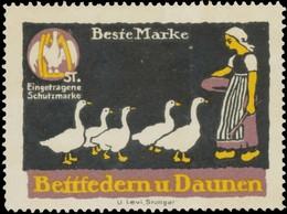Frau Hütet Gänse Reklamemarke - Vignetten (Erinnophilie)