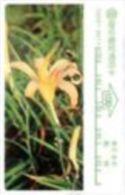 Taiwan - 1994 - 100 Units - Medicinal Herbs / Tiger Lily - C-Series - Tai:C 0021- Used - Taiwan (Formosa)