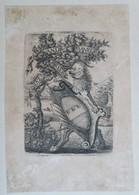 Ex-libris Armorié XIXème - Andre MAURER - Zurich - Ex Libris