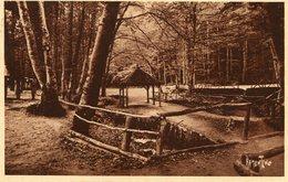 72 - SAINT-VINCENT-du-LOROUER - Fôret De Bercé. Les Sources De L'Hermitière. Rendez-vous De Nombreux Touristes - France