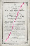 En 1875 Borre Et  Bailleul (59) Adélaïde DEGRENDEL Epouse De Joseph STAES Née En 1825 - Décès