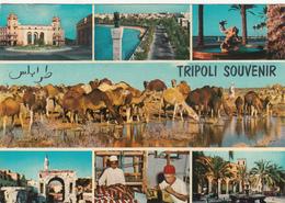 LIBYA - Tripoli Souvenir 1975 - Libya