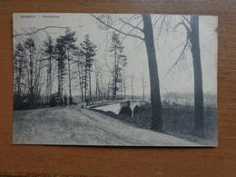 Boitsfort - Bosvoorde: Kattebrug --> Onbeschreven - Watermael-Boitsfort - Watermaal-Bosvoorde