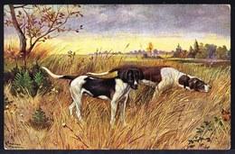 CPA POINTING DOG - CHIEN DE CHASSE - JACHTHOND - HUND - BRAQUE - POINTER - CHIEN D'ARRET - Chiens