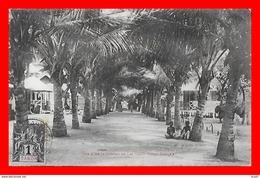 CPA LAC CAYO (Congo Français)  Une Allée De Cocotiers, Animé...CO1640 - Congo Français - Autres