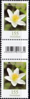 BRD ** , Blumen:  155 Cent Buschwindröschen Mit EAN Code,  Nr. 120 - Ongebruikt