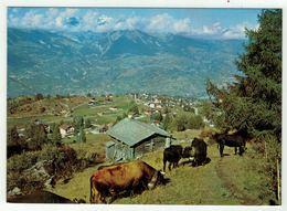 Suisse // Schweiz // Valais // Haute-Nendaz,la Station - VS Wallis