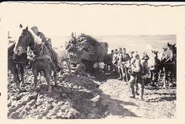 Foto Deutsche Soldaten Mit Pferden Und Fuhrwerk Im Schlamm - 2: WK - 8,5*5,5cm (42411) - Krieg, Militär