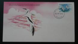 Carte Maximum Card Paille-en-queue Tropic Bird Dominica 1979 - Perroquets & Tropicaux