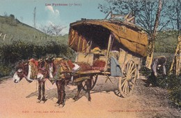 1900'S CPA FOLK DRESSED- LES PYRENNEENS. ATTELAGE BERNAIS. LABOUCHE FRERES- BLEUP - Folklore