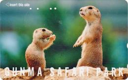 RARE Télécarte Japon / 110-011 - ANIMAL MARMOTTE ** Série GUNMA SAFARI PARK ** - MARMOT PRAIRIE DOG Japan Phonecard 196 - Jungle