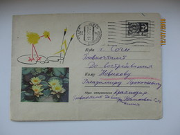 USSR RUSSIA   BIRD ON FLOWER WATER NYMPH 1967 POSTAL STATIONERY COVER - Cigognes & échassiers