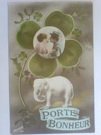 Cpa     PORTE BONHEUR  Trèfles à 4 Feuilles Elèphant - Fancy Cards