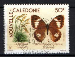 NUOVA CALEDONIA - 1990 - Cyperacea Costularia - USATO - Neukaledonien