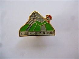 PINS CHARTREUSE MONTAGNE  Escalade / Signé SAGIP/ Base Dorée / 33NAT - Alpinisme