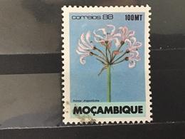 Mozambique - Bloemen (100) 1988 - Mozambique