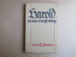 Harold Der Letzte Grachfenfönig - Livres, BD, Revues
