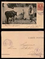 REGNO - Piroscafo Postale Letimbro 19.10.01 (viola) - Cartolina Da Creta A Palermo - Unclassified