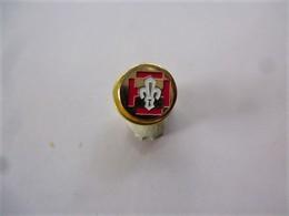 PINS  MINIATURE FLEUR DE LYS  ( Doré )  / 33NAT - Badges