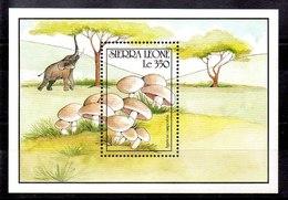 Hoja Bloque De Sierra Leona N ºYvert 151 ** SETAS (MUSHROOMS) - Sierra Leona (1961-...)