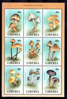 Serie De Liberia N ºYvert 1715/23 ** SETAS (MUSHROOMS) - Liberia