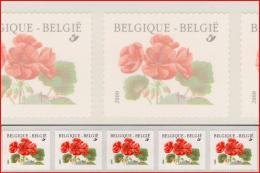 Belgium RX 104** Geranium  Buzin  MNH - Coil Stamps