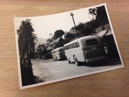 OLDTIMER-BUSSE - FOTO HERTERICH (?) - KARL-MARX-STADT - Auto's