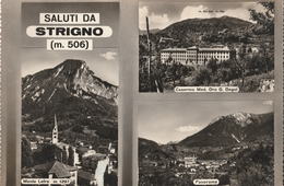 Cartolina  - Postcard /   Viaggiata -  Sent /  Saluti Das Strigno. ( Gran Formato ) Anni 50° - Trento