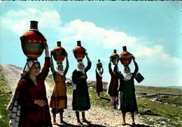 !  Modern Postcard Libanon, Liban, Lebanon, Water Carriers - Libanon