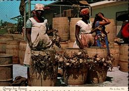 !  Modern Postcard Paramaribo, Surinam, Suriname, Market Woman Selling River Crabs, Krebse - Suriname