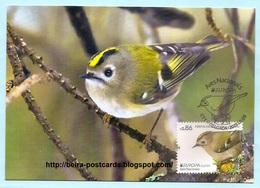 PORTUGAL - AZORES AÇORES EUROPA CEPT NATIONAL BIRDS Regulus Regulus Azoricus MAXIMUM CARD - Maximumkaarten