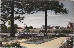 SAINT BRIEUC Parc De Ty Coat ( Roses ) - Saint-Brieuc