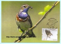 PORTUGAL - EUROPA CEPT NATIONAL BIRDS Lusonia Sveoca OISEAUX MAXIMUM CARD - Maximumkaarten
