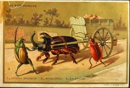 Chromos > Magasins > Au Bon Marché Paris > Attelage Avec Des Insectes - En L'état - Au Bon Marché