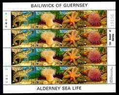 1986 GUERNSEY (Bailiwick Of) Alderney Sea Life MNH ** Sheet Foglietto - Guernesey