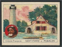 Chromo Saint Pierre Et Miquelon Colonies Françaises Sans Pub..BON POINT Inscrit Au Dos Didactique 70 X 50 Mm TB - Trade Cards