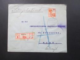 Niederländisch Indien 1923 Registered Letter Ned Indie Batavia 924 Beleg Oesterreichisches Konsulat Für Nied. Ost Indien - Nederlands-Indië
