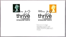WORKING DOGS - THRIVE From Petproject. PERRO - DOG. London 2008 - Hunde