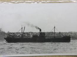 KYLEFIRTH     Monroe Brtothers Ltd   Liverpool - Barche