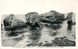 CPA - PIRIAC-SUR-MER - LES OREILLERS A MADAME, PRIS DE LA COTE - Piriac Sur Mer