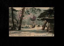 Cartolina Giappone Arashiyama At Kyoto - Cherry Flowers Srpings - Japan - With Stamp Not Sent - Kyoto