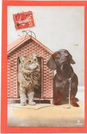 CHIEN TECKEL Et CHAT - Niche En Oisier - Hunde