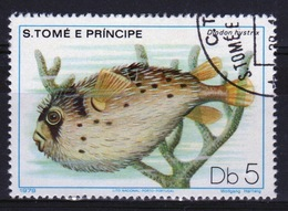 St Thomas & Prince Islands 1980 Single 5Db Stamp From The Fish Series. - Sao Tome And Principe
