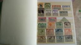 F309 ALBUM STOCK CONGO BELGE + DIVERS A TRIER BELLE COTE POIDS 0.600 KG DÉPART 10€ - Collections (en Albums)