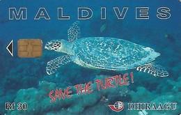 USATA-MALDIVE - Maldive