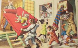 """Vermenschlichte, Personifizierte, Katzen, Umzug, Lkw"" 1960  ♥  (14551) - Katzen"